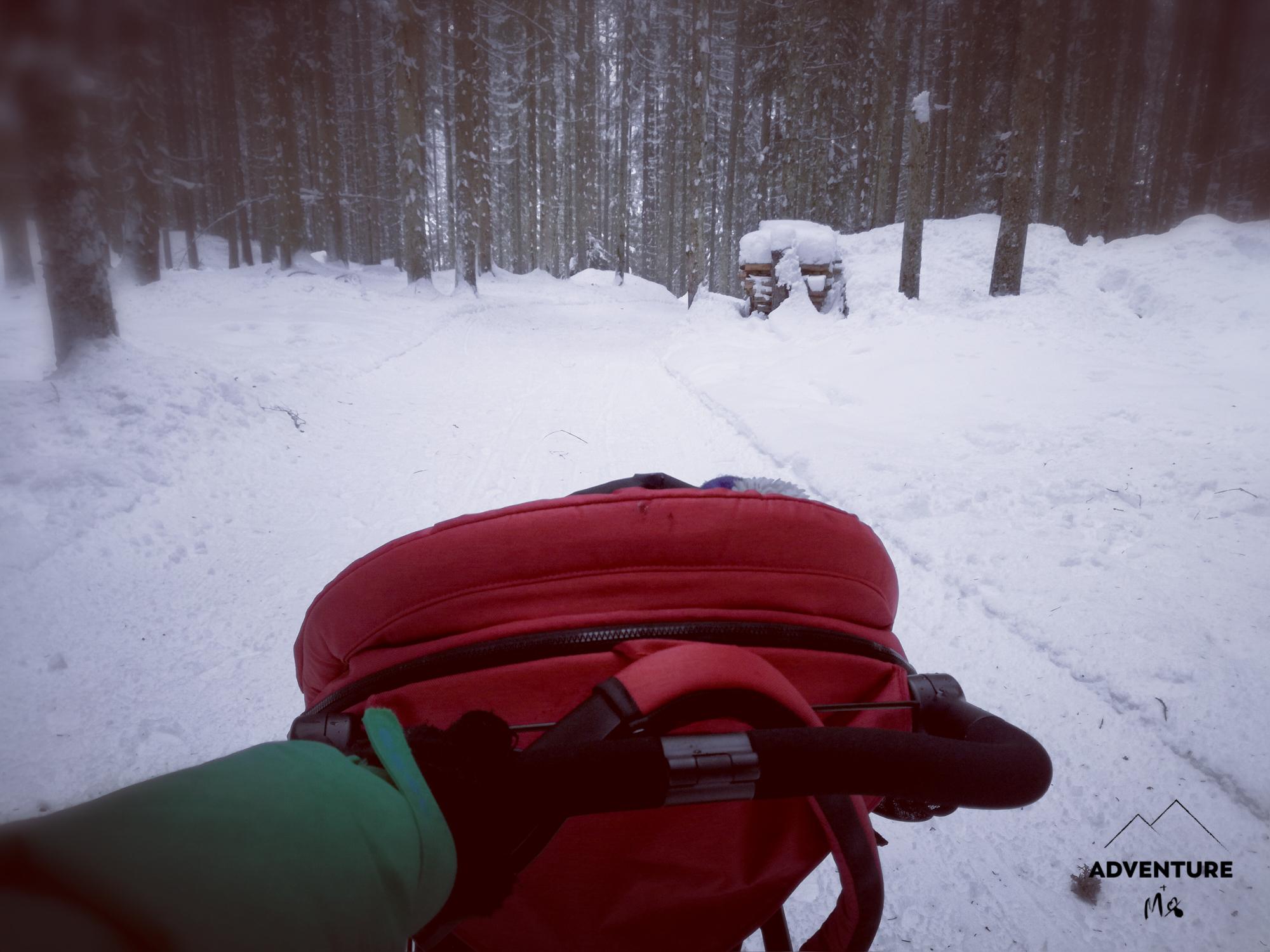 Ein roter Kinderwagen wird durch den verschneiten Wald geschoben
